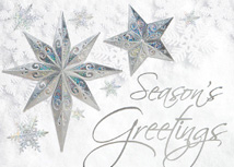 Stars of Wonder Holiday Cards